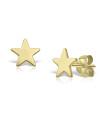 Cercei din aur Flat Star Love cu stelute